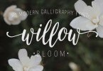Willow Bloom [1 Font] | The Fonts Master
