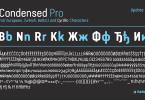 Van Condensed [6 Fonts] | The Fonts Master