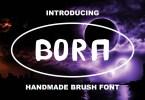 Bora [1 Font] | The Fonts Master