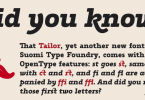 Tailor [2 Fonts] | The Fonts Master