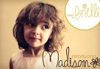 Madison [1 Font] | The Fonts Master