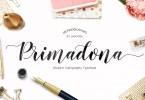 Primadona Script [1 Font] | The Fonts Master