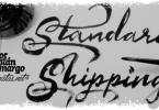 Bemol [8 Fonts] | The Fonts Master