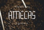 Amecas [1 Font] | The Fonts Master