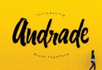 Andrade [1 Font] | The Fonts Master