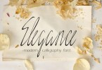 Elegance Script [1 Font] | The Fonts Master