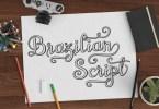 Brazilian Script (Plus 12 Fonts) [14 Fonts] | The Fonts Master