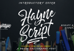 Hayne Script [7 Fonts] | The Fonts Master
