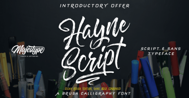 Hayne Script [7 Fonts] | The Fonts Master