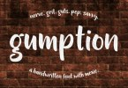 Gumption [1 Font] | The Fonts Master