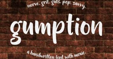 Gumption [1 Font] | The Fonts Master