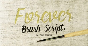 Forever Brush Script [1 Font] | The Fonts Master