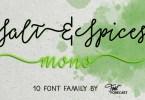 Salt &Amp; Spices Mono Super Family [10 Fonts] | The Fonts Master