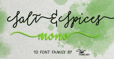 Salt &Amp; Spices Mono Super Family [10 Fonts] | The Fonts Master