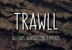 Trawll [1 Font] | The Fonts Master