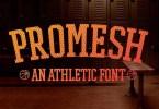 Promesh [3 Fonts] | The Fonts Master