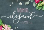 The Blooming Elegant Font Trio [6 Fonts + Extras] | The Fonts Master