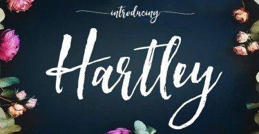 Hartley [5 Fonts] | The Fonts Master