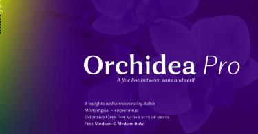 Orchidea Pro Super Family [16 Fonts] | The Fonts Master