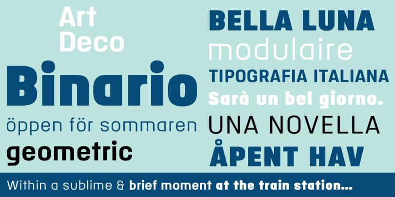 Binario [3 Fonts]   The Fonts Master