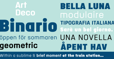 Binario [3 Fonts] | The Fonts Master