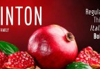 Hinton [7 Fonts] | The Fonts Master