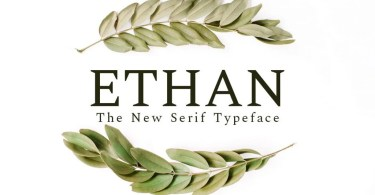 Ethan [6 Fonts] | The Fonts Master