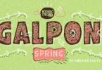 Galpon Spring [11 Fonts] | The Fonts Master