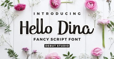 Hello Dina Script [2 Fonts] | The Fonts Master