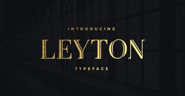 Leyton [2 Fonts] | The Fonts Master