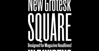 New Grotesk Square [7 Fonts] | The Fonts Master