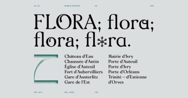 Morion [2 Fonts] | The Fonts Master