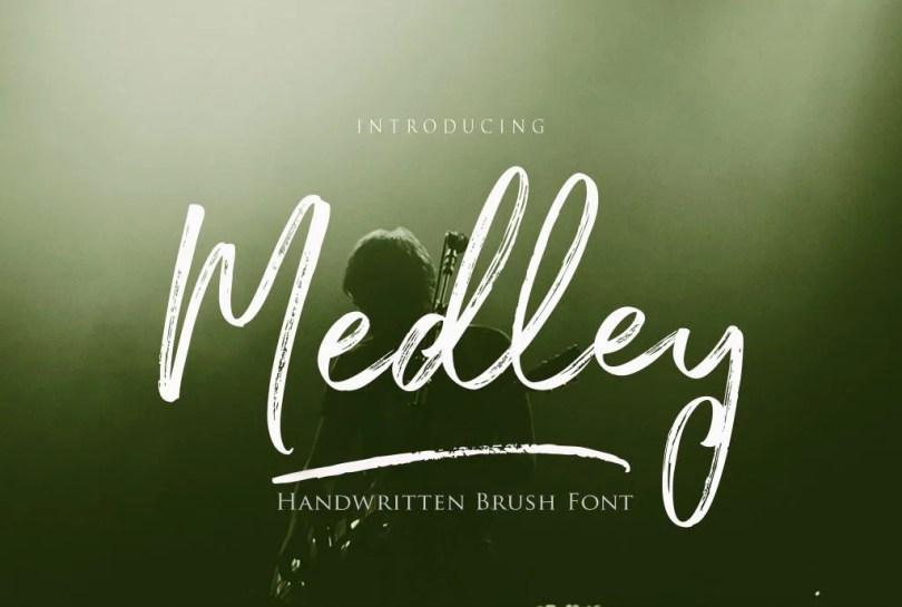 Medley Script [4 Fonts]   The Fonts Master