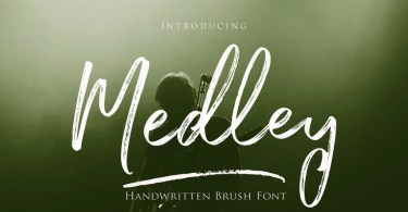 Medley Script [4 Fonts] | The Fonts Master