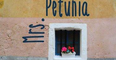 Mrs. Petunia [1 Font] | The Fonts Master