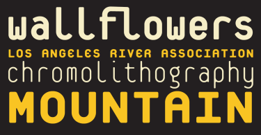 Platelet [3 Fonts] | The Fonts Master