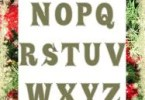 Satinsoft [2 Fonts] | The Fonts Master