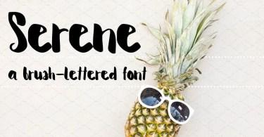 Serene [1 Font] | The Fonts Master