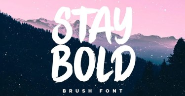 Stay Bold [1 Font] | The Fonts Master