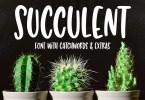 Succulent [2 Fonts] | The Fonts Master