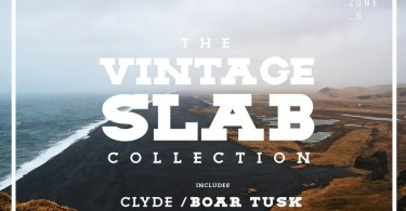 The Vintage Slab Font Collection [8 Fonts]