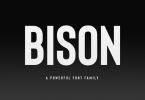 Bison [12 Fonts] | The Fonts Master