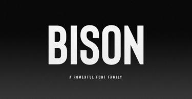 Bison [12 Fonts]