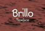 Brillo [1 Font] | The Fonts Master