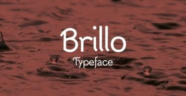 Brillo [1 Font]   The Fonts Master