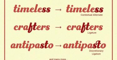 Frunch [2 Fonts] | The Fonts Master