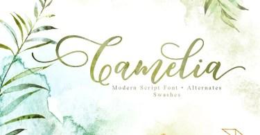 Camelia Script [2 Fonts] | The Fonts Master