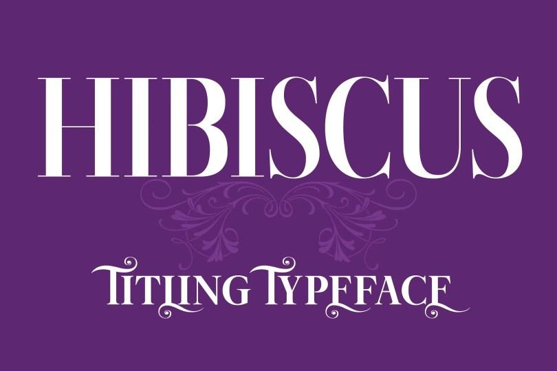 Hibiscus [4 Fonts]