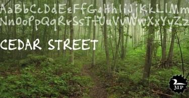 Cedar Street [1 Font] | The Fonts Master