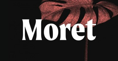Moret Super Family [10 Fonts] | The Fonts Master